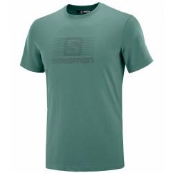 triko SALOMON Blend Logo SS Tee M balsam green